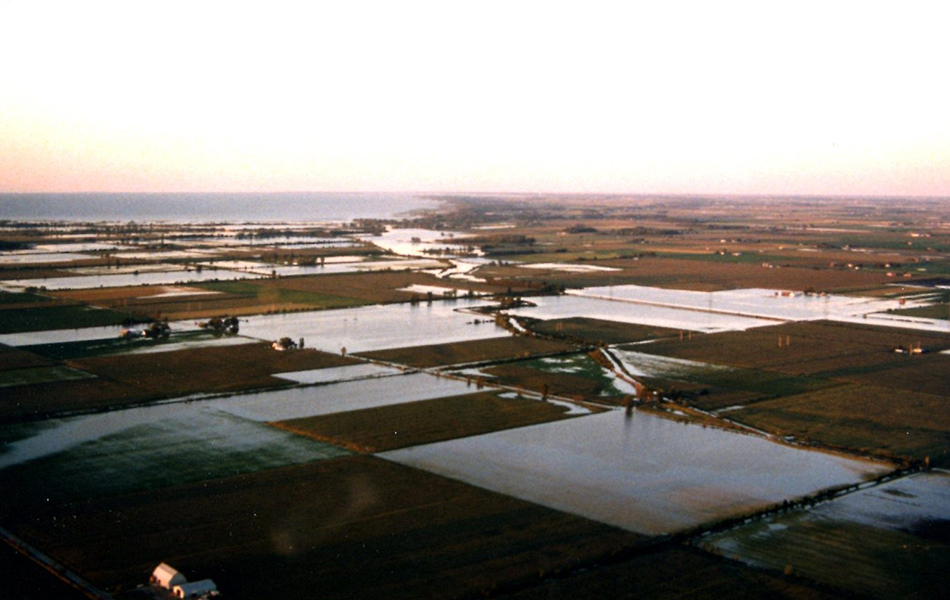 A flooded agriculture field